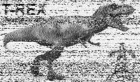 T-Rex 16 Unofficial 5